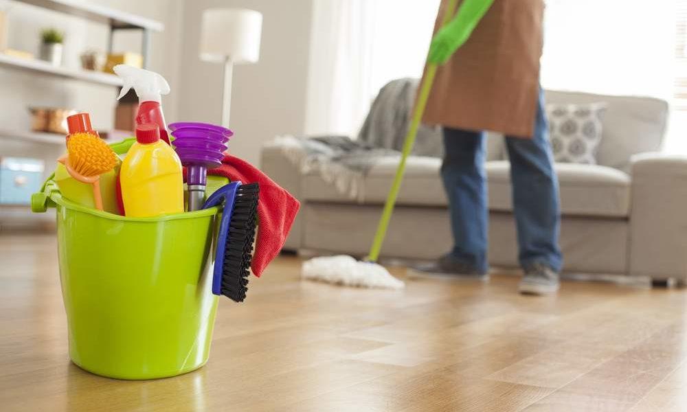 lavoratori_domestici